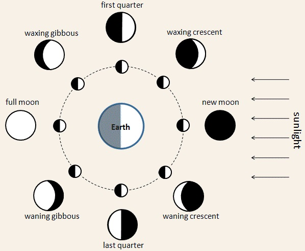 Phases of the moon. Wikipedia Commons.