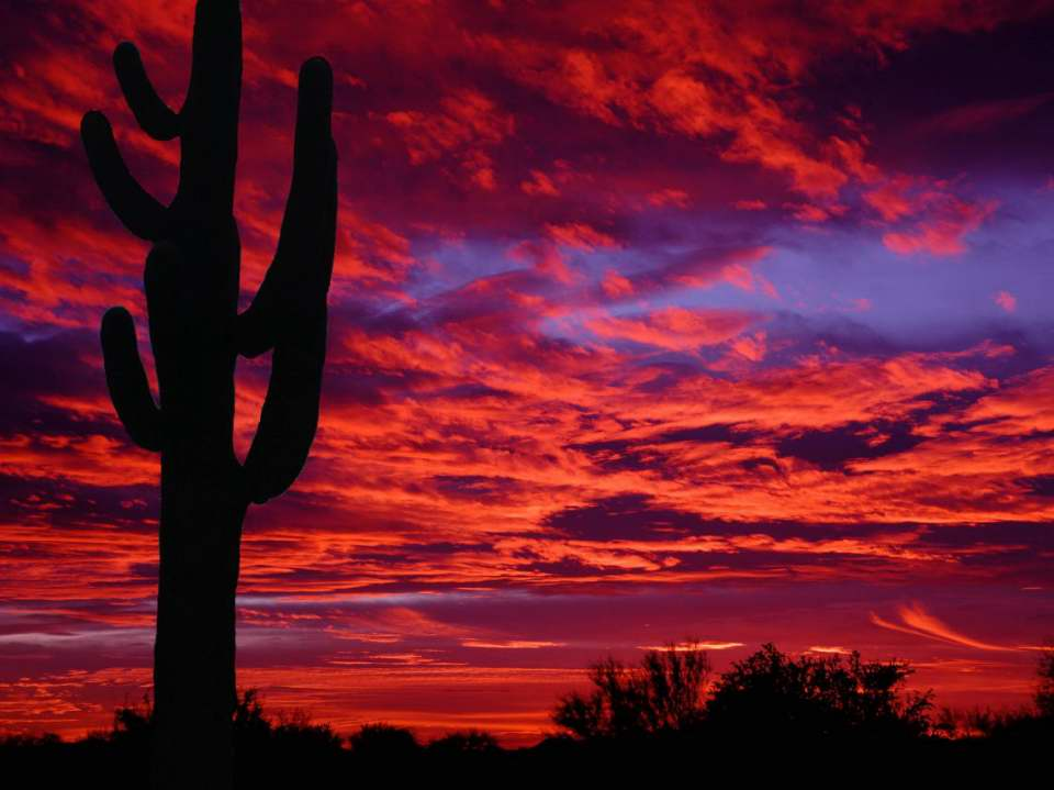 Sunset over Terravita, Scottsdale, AZ