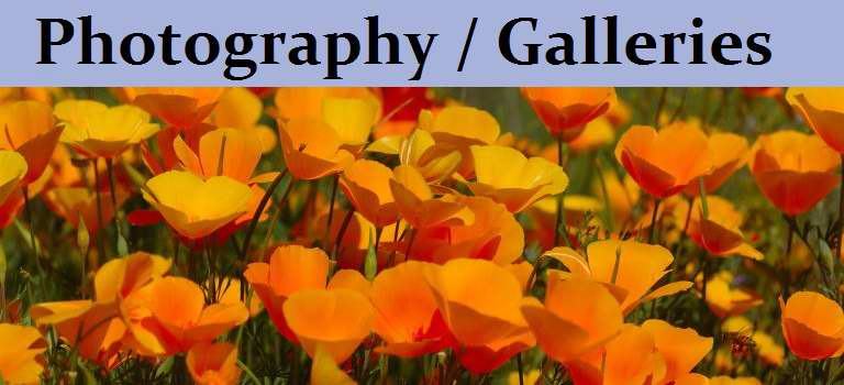 Photography / Galleries